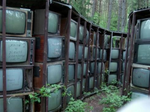 largest-tv-1