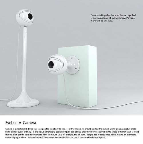 Mintpass Webcam 2