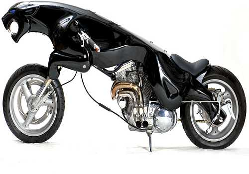 Black Jaguar The Leaper 1