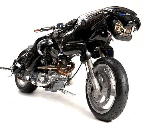 Black Jaguar The Leaper