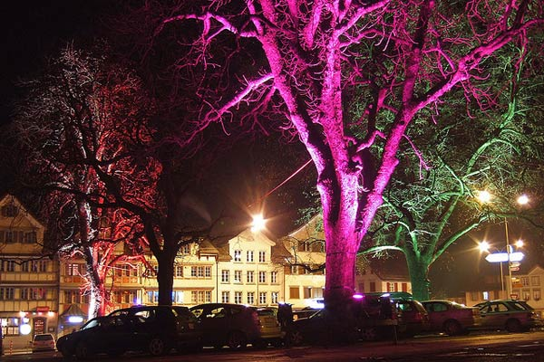 Glowing Trees