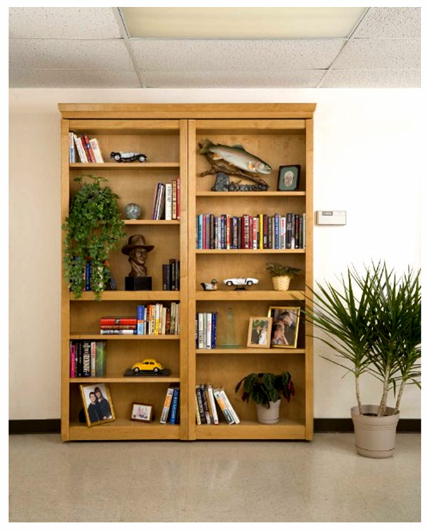 Hidden bookcase2